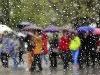 Slovensko potrápi silný dážď: Meteorológovia varujú pred búrkami na väčšine územia