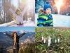 Nečakaný ZVRAT: Po mrazivom víkende príde teplotný šok, dnes rozkvitli aj snežienky!