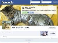 Týranie mačiek a psov je pre tvorcov stránky zábava