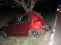 Tragédia pri Skalici: Vodič Fabie (†31) bol na mieste mŕtvy, auto začalo horieť