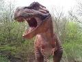 Chcel sa volať ako dinosaurus: Zmenil si meno na Tyrannosaurus Rex!