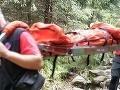 Nočný zásah tatranských záchranárov: Museli ratovať poľského turistu