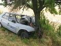 Tragická nehoda: Opitý vodič zahynul po náraze do stromu!