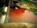 Obyvatelia Myjavy v totálnej panike: Potoky krvi sa valia mestom, volali masovo!