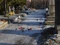 Chlapci vyčíňali na cintoríne
