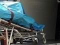 Desivý nález v pivnici advokátskej kancelárie: V priestoroch objavili mŕtvoly
