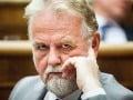 SaS plánuje novelu zákona o volebnej kampani: Zrušiť chce finančné limity aj moratórium