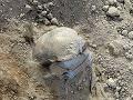 Polícia odhalila pôvod ľudských