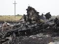 Pozostalí obetí letu MH17