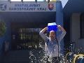 Výzvu na Ice Bucket