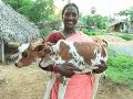 VIDEO v Indii sa stal zázrak: Boh Šiva sa prevtelil a žije medzi dedinčanmi!