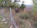 Štyria mladíci zo Šale skončili na peugeote prevrátení mimo cesty: Dvaja sú zranení ťažko!