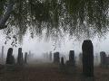 Cintoríny a urnový háj krematória v Bratislave po víchrici opätovne otvorili