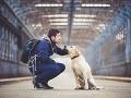 Väznica je pokojným prístavom pre psy: Odsúdení zločinci kvôli zvieratám mäknú