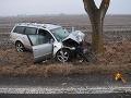 FOTO Tragická nehoda mladíka: Čelný náraz do stromu stál Tamása (†20) život