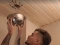 Hororové VIDEO: Mladík chcel chytiť pavúka do misy, ten s ním vybabral