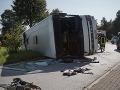 Nehoda autobusu si vyžiadala jedenásť mŕtvych: Vodič cez hmlu nevidel a narazil
