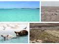 Obrovská sila prírody v priamom prenose! Najkrajšia pláž Karibiku zmizla, hurikán ju vysal