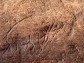 Ďalší objav v Egypte: 15-tisíc rokov staré graffiti v púšti