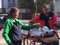 Krvilačný útok na bezbranné dievčatko: Kristínku (2) dohrýzli pri Rimavskej Sobote psy