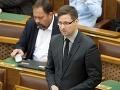 Fidesz chce bojovať proti biznis stranám: Mať štátne dotácie nebude také jednoduché
