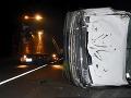 Mladík (22) na dodávke prežil neobvyklú nehodu: FOTO Nočná zrážka so šelmou