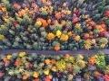Jeseň v majestátnych Tatrách:
