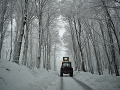 Východ Slovenska čelil zlému počasiu: Padali stromy, liala sa voda, vyčíňala snehová búrka