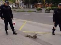 Obetavá práca policajtov