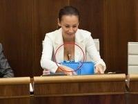 Poslankyňa Alena Bašistová