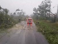 Búrky na severe Poľska zdevastovali lesy