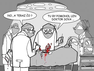 KARIKATÚRA Doktor Sova bude chýbať každému