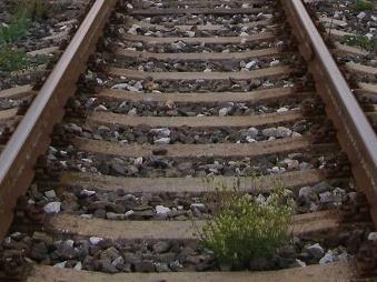 Tragédia na železničnej stanici pri Malackách: Muž skončil pod vlakom, nevylučujú samovraždu