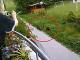 Ďalší šok na bratislavskom sídlisku: VIDEO Ľudí straší lesná zver, poľovníci v tom majú jasno