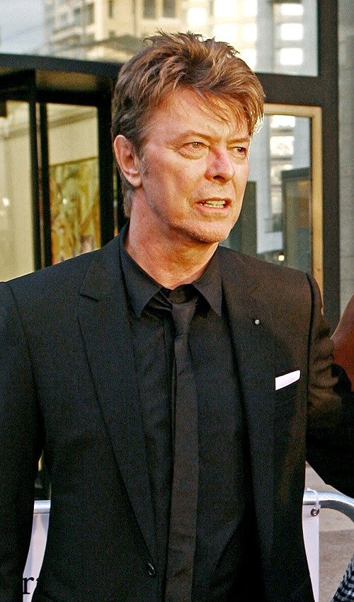 http://img.topky.sk/big/1199915.jpg/SITA-David-Bowie.jpg