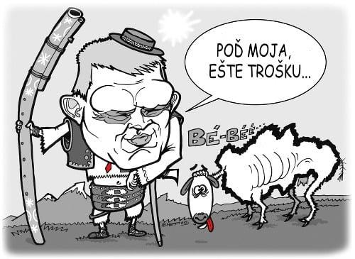 Výsledok vyhľadávania obrázkov pre dopyt slovensko karikatura politika