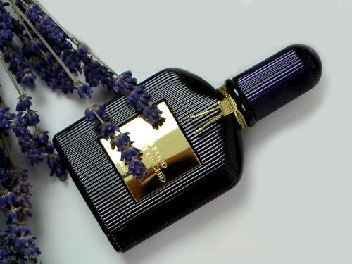 Vôňa Velvet Orchid od