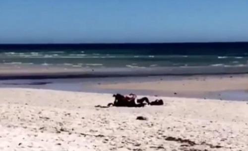 amaterky sk sex na plazi