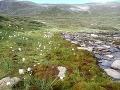 rieka v Reinheimskom údolí