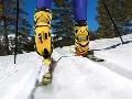 Bežecké lyžovanie (cross country