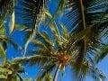 Havaj, USA