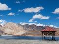 Tibet – drsný, pre