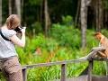Na meter od orangutanov: