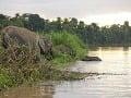 Rieka Kinabatangan, Malajzia