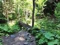 Prístupový chodník na Ferratu