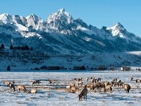 Jackson Hole, Wyoming, USA