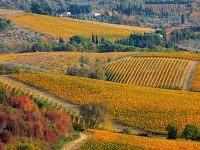 Chianti, Toskánsko, Taliansko