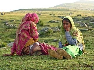 Mladé pastierky, Kašmír, India