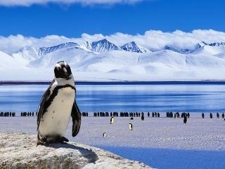 Antarktída - splnenie ľadového