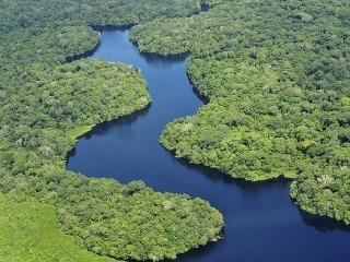 Amazonský prales, Brazília